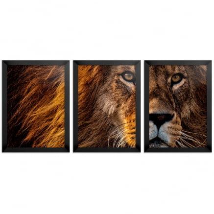 Mosaico 3 peças leão