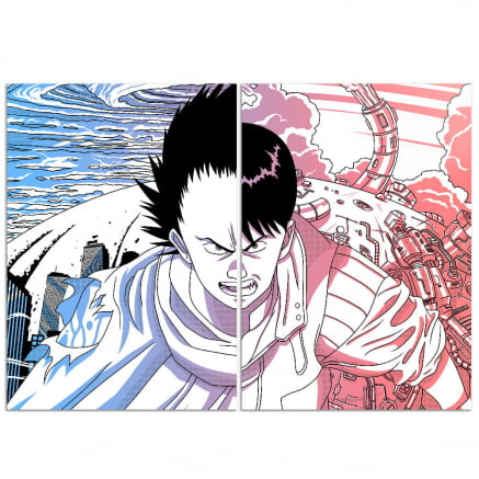 Quadro Duplo Akira Tetsuo vs Kaneda