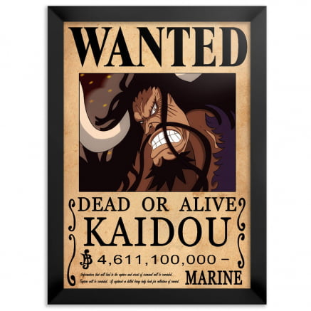Quadro one piece wanted Kaidou