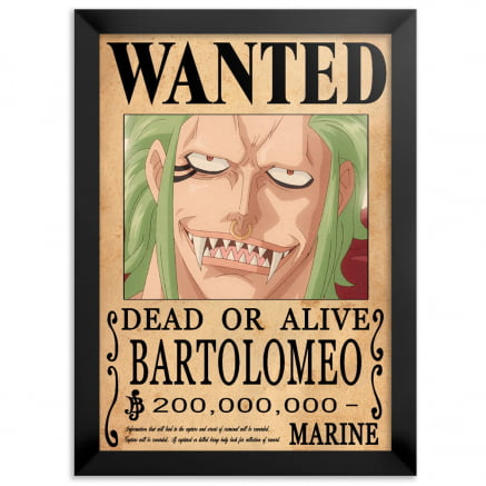 Quadro one piece wanted Bartolomeo