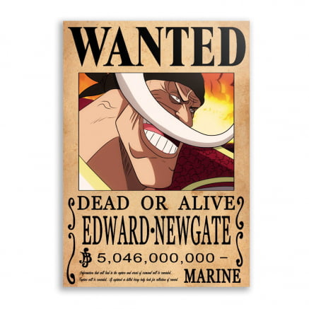 Quadro one piece wanted Barba Branca