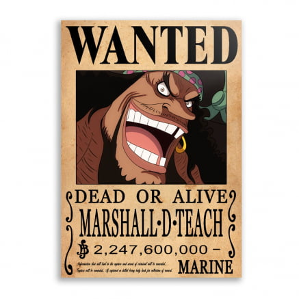 Quadro one piece wanted Barba Negra