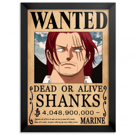 Quadro one piece wanted Shanks