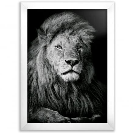 Quadro Leão preto e branco