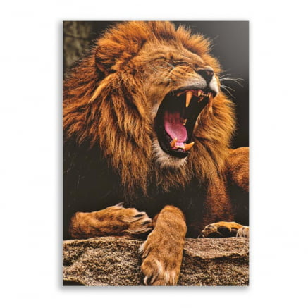 Quadro Leão Rugindo