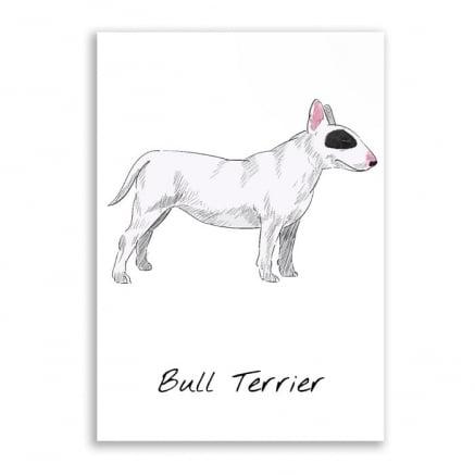 Quadro bull terrier