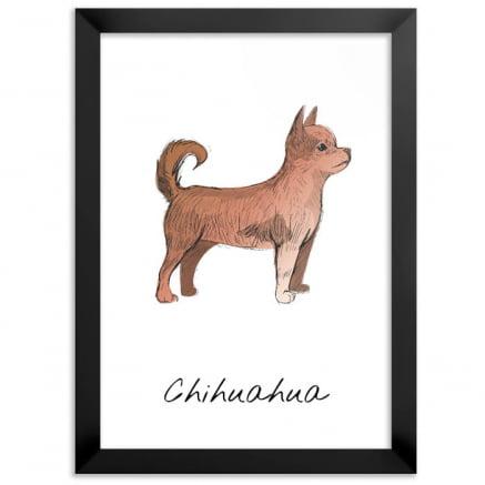 Quadro chihuahua