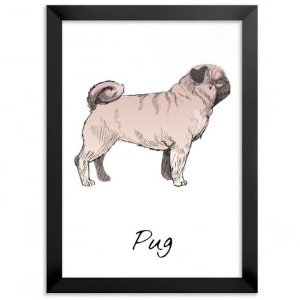 Quadro Pug