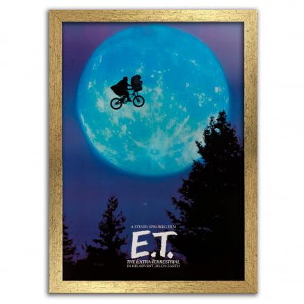 Quadro E.T. o extraterrestre